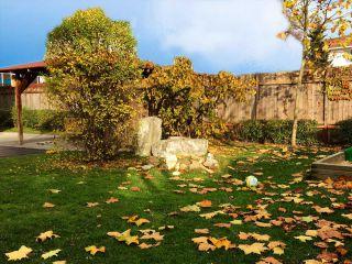 Foto vom Garten